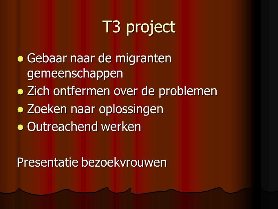 T3 project Gebaar naar de migranten gemeenschappen Gebaar naar de migranten gemeenschappen Zich ontfermen over de problemen Zich ontfermen over de problemen Zoeken naar oplossingen Zoeken naar oplossingen Outreachend werken Outreachend werken Presentatie bezoekvrouwen