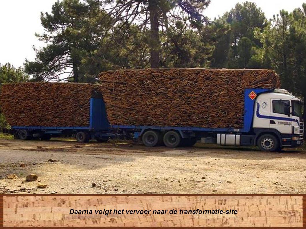 Transport naar de opslaglocatie voor stockage.