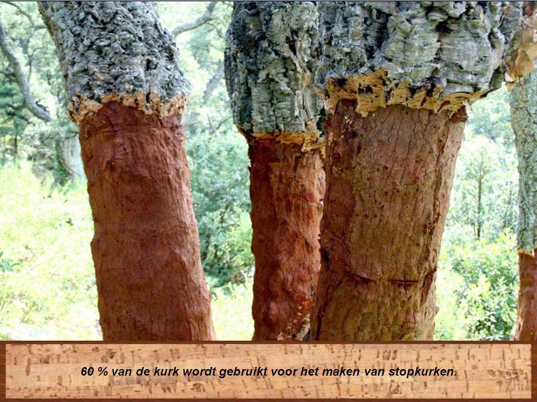 Kurk is eenvoudig te recycleren en draagt bij tot het behoud van het eco-systeem : het vermijdt een plaatselijke zure omgeving,
