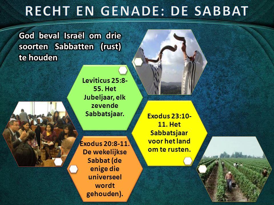 Exodus 20:8-11. De wekelijkse Sabbat (de enige die universeel wordt gehouden).