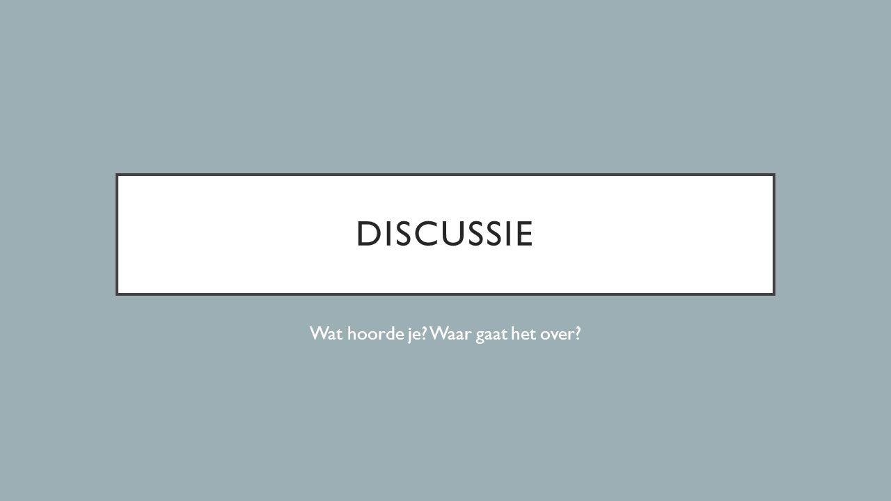 DISCUSSIE Wat hoorde je? Waar gaat het over?