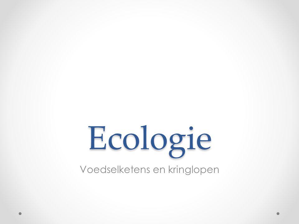 Ecologie Voedselketens en kringlopen