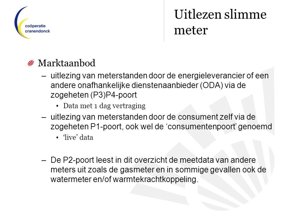 Marktaanbod –uitlezing van meterstanden door de energieleverancier of een andere onafhankelijke dienstenaanbieder (ODA) via de zogeheten (P3)P4-poort Data met 1 dag vertraging –uitlezing van meterstanden door de consument zelf via de zogeheten P1-poort, ook wel de 'consumentenpoort' genoemd 'live' data –De P2-poort leest in dit overzicht de meetdata van andere meters uit zoals de gasmeter en in sommige gevallen ook de watermeter en/of warmtekrachtkoppeling.