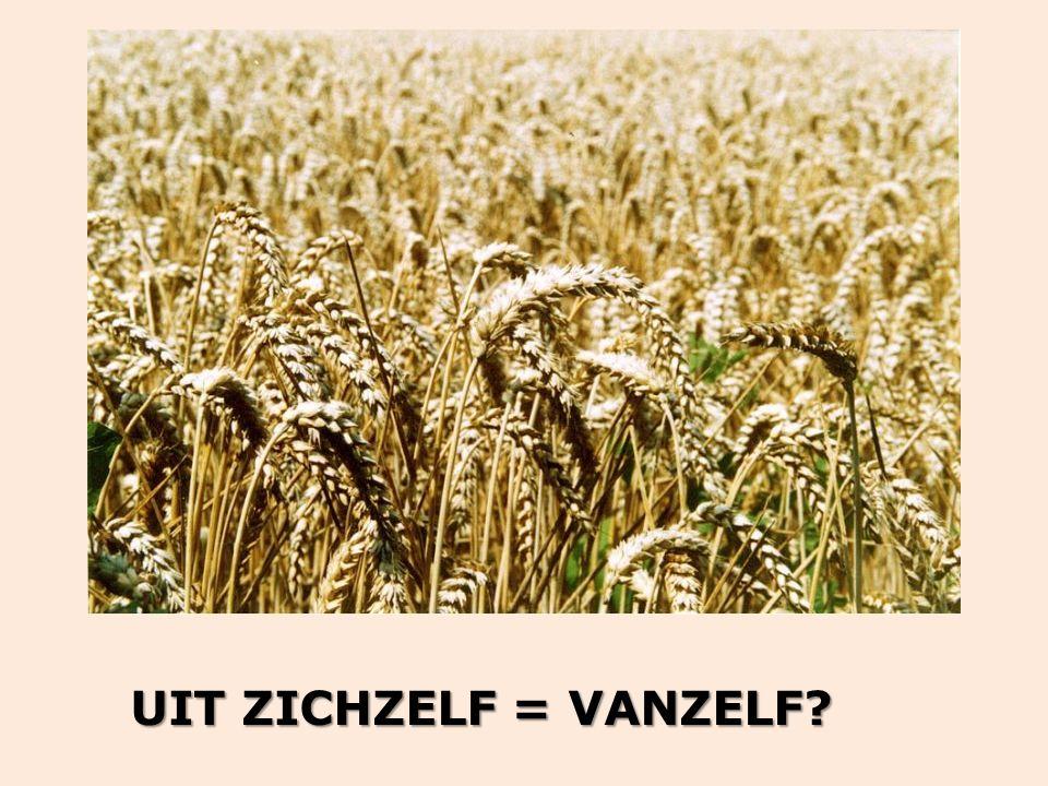 UIT ZICHZELF = VANZELF?