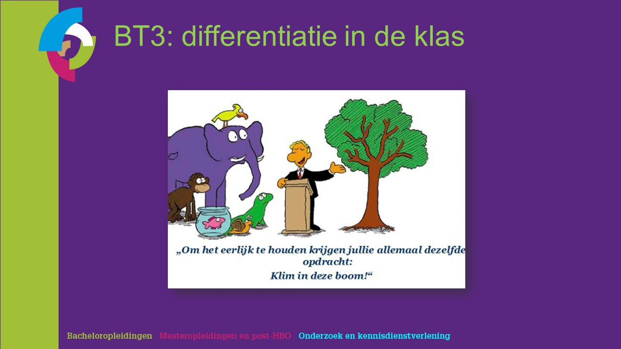 BT3: differentiatie in de klas