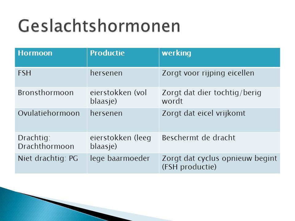 HormoonProductiewerking FSHhersenenZorgt voor rijping eicellen Bronsthormooneierstokken (vol blaasje) Zorgt dat dier tochtig/berig wordt Ovulatiehormo
