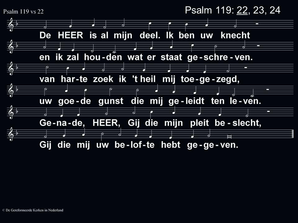Psalm 119: 22, 23, 24