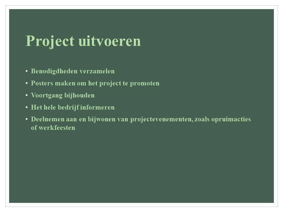 Project uitvoeren Benodigdheden verzamelen Posters maken om het project te promoten Voortgang bijhouden Het hele bedrijf informeren Deelnemen aan en bijwonen van projectevenementen, zoals opruimacties of werkfeesten