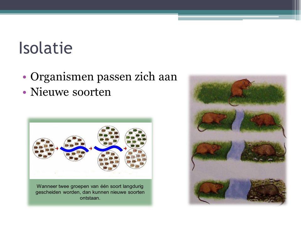 Isolatie Organismen passen zich aan Nieuwe soorten