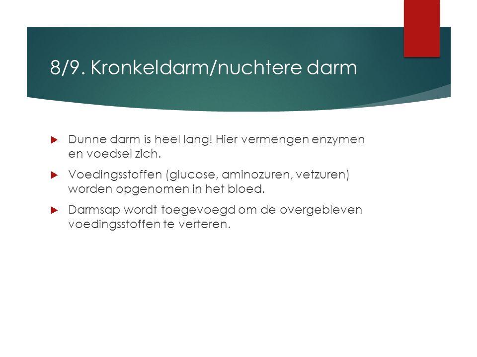8/9. Kronkeldarm/nuchtere darm  Dunne darm is heel lang! Hier vermengen enzymen en voedsel zich.  Voedingsstoffen (glucose, aminozuren, vetzuren) wo