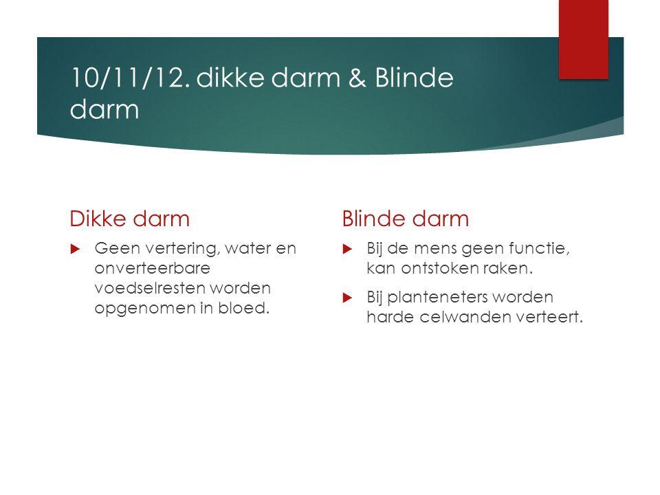 10/11/12. dikke darm & Blinde darm Dikke darm  Geen vertering, water en onverteerbare voedselresten worden opgenomen in bloed. Blinde darm  Bij de m