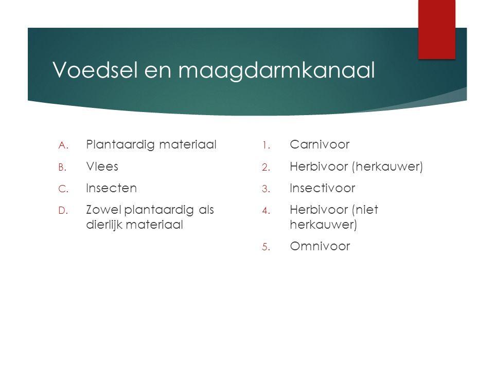Voedsel en maagdarmkanaal A. Plantaardig materiaal B. Vlees C. Insecten D. Zowel plantaardig als dierlijk materiaal 1. Carnivoor 2. Herbivoor (herkauw