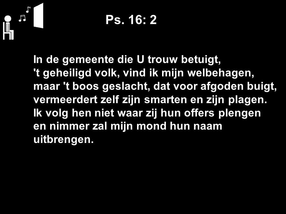 Ps. 16: 2 In de gemeente die U trouw betuigt, 't geheiligd volk, vind ik mijn welbehagen, maar 't boos geslacht, dat voor afgoden buigt, vermeerdert z