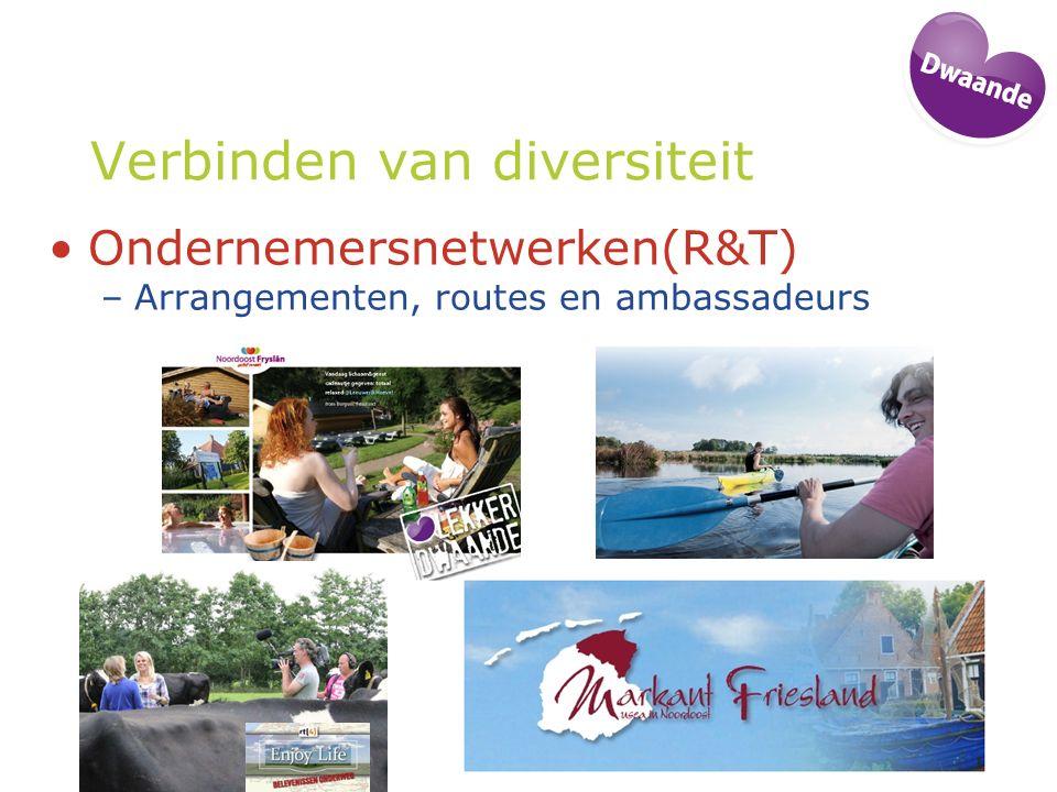 Verbinden van diversiteit Ondernemersnetwerken(R&T) –Arrangementen, routes en ambassadeurs