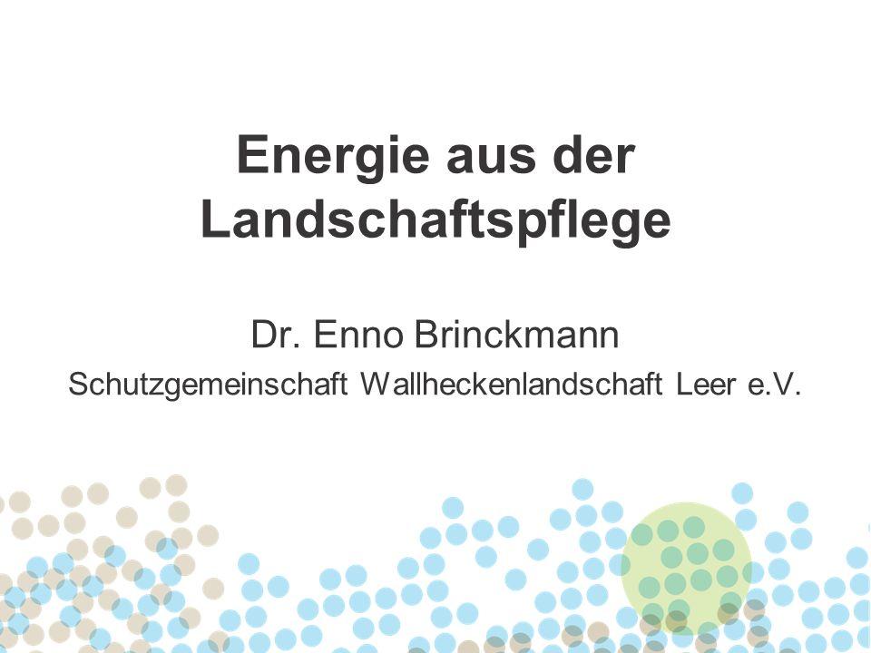 Energie aus der Landschaftspflege Dr. Enno Brinckmann Schutzgemeinschaft Wallheckenlandschaft Leer e.V.