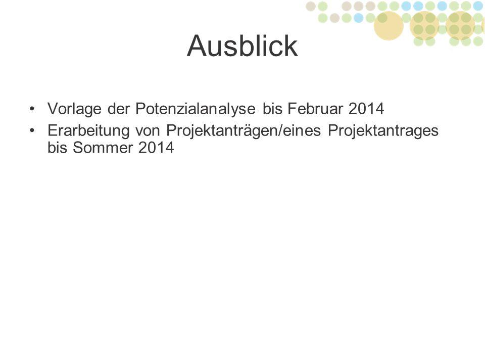 Ausblick Vorlage der Potenzialanalyse bis Februar 2014 Erarbeitung von Projektanträgen/eines Projektantrages bis Sommer 2014