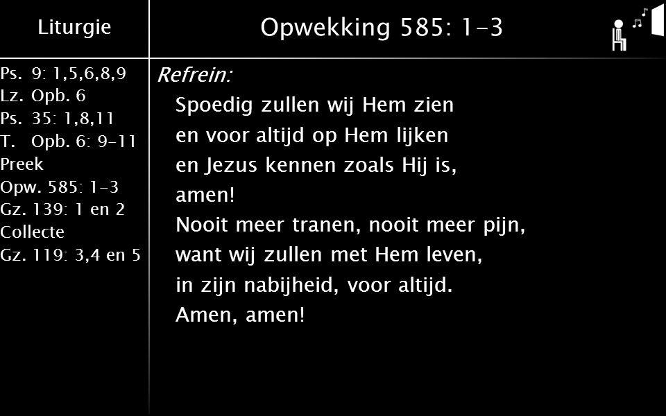 Liturgie Ps.9: 1,5,6,8,9 Lz.Opb. 6 Ps.35: 1,8,11 T.Opb. 6: 9-11 Preek Opw. 585: 1-3 Gz. 139: 1 en 2 Collecte Gz. 119: 3,4 en 5 Opwekking 585: 1-3 Refr