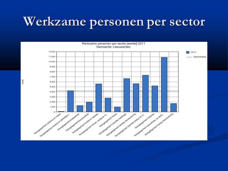 Werkzame personen per sector