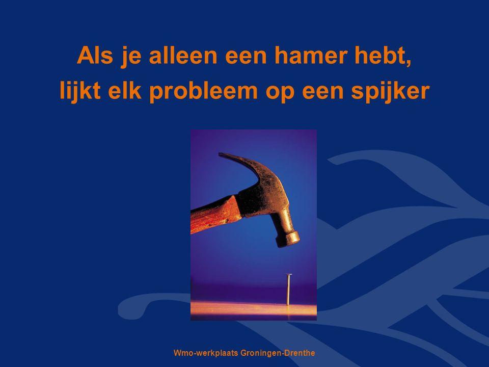Wmo-werkplaats Groningen-Drenthe Als je alleen een hamer hebt, lijkt elk probleem op een spijker