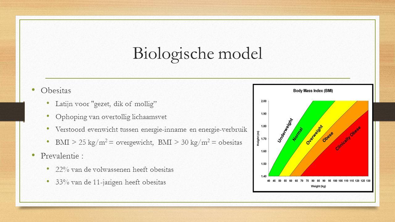 Biologische model Obesitas Latijn voor gezet, dik of mollig Ophoping van overtollig lichaamsvet Verstoord evenwicht tussen energie-inname en energie-verbruik BMI > 25 kg/m 2 = overgewicht, BMI > 30 kg/m 2 = obesitas Prevalentie : 22% van de volwassenen heeft obesitas 33% van de 11-jarigen heeft obesitas