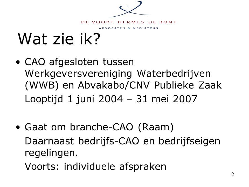 3 Wat is een CAO.