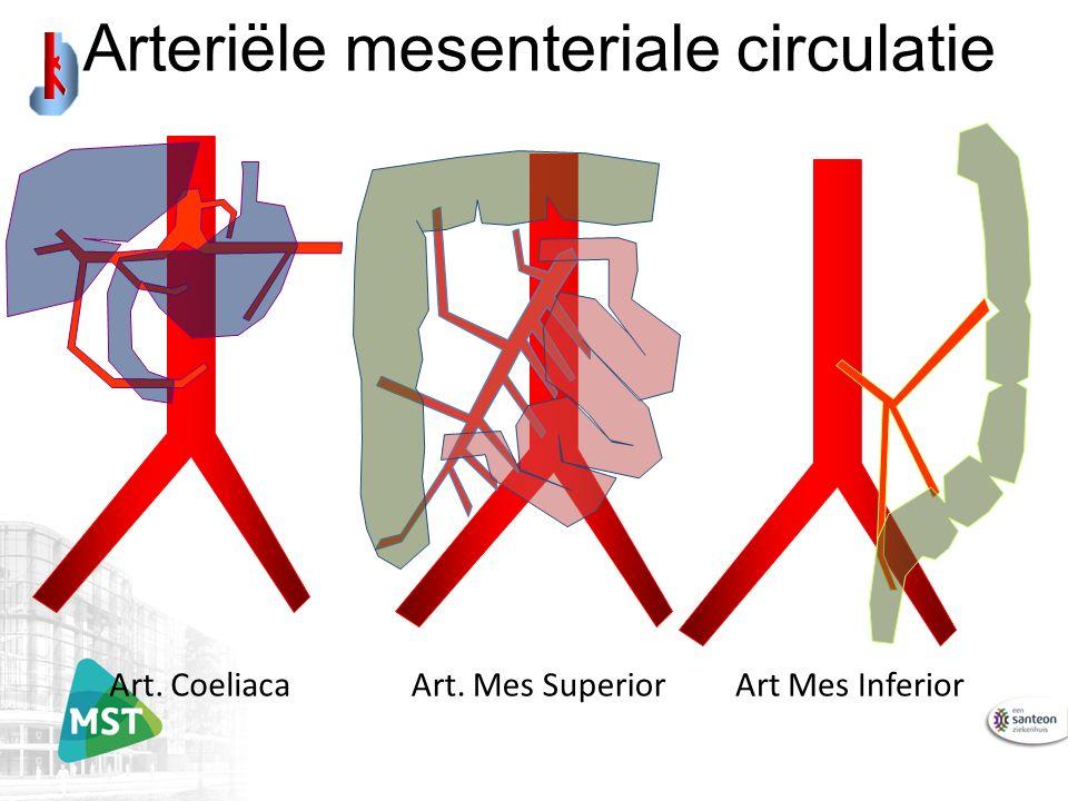 Arteriële mesenteriale circulatie Art. CoeliacaArt Mes InferiorArt. Mes Superior