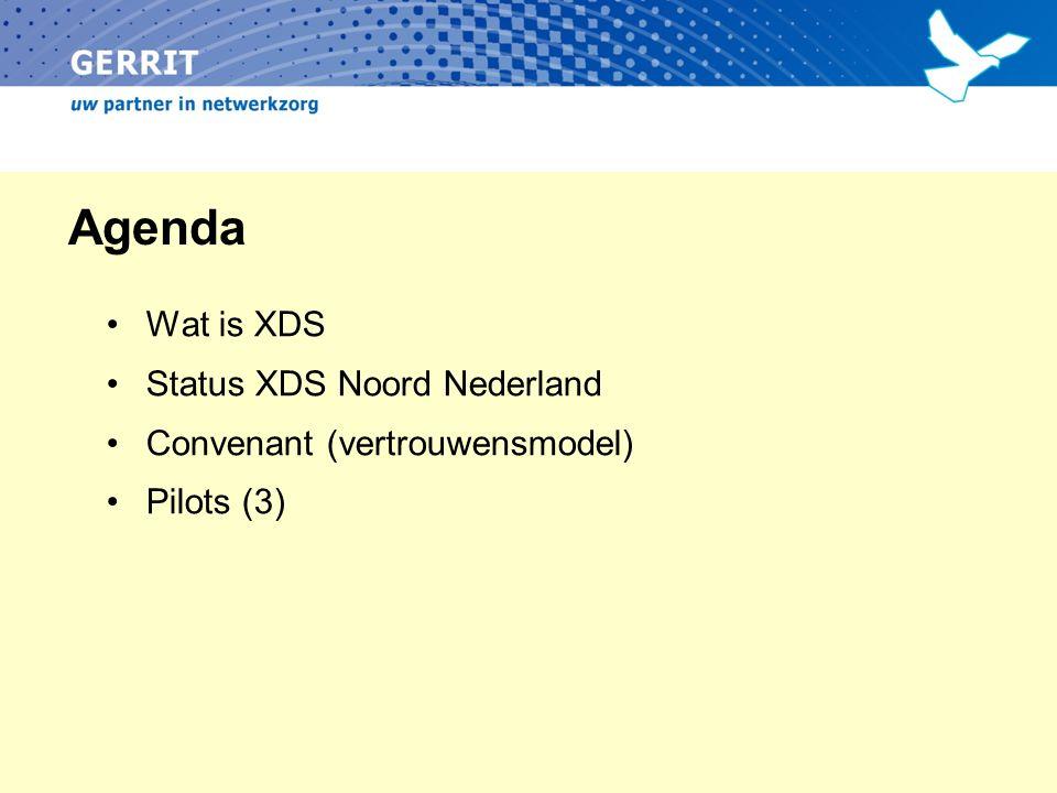 Cross-Enterprise Document Sharing IHE XDS – Internationale standaard Diverse standaard componenten Document Source Document Registry Document Repository Document Consumer