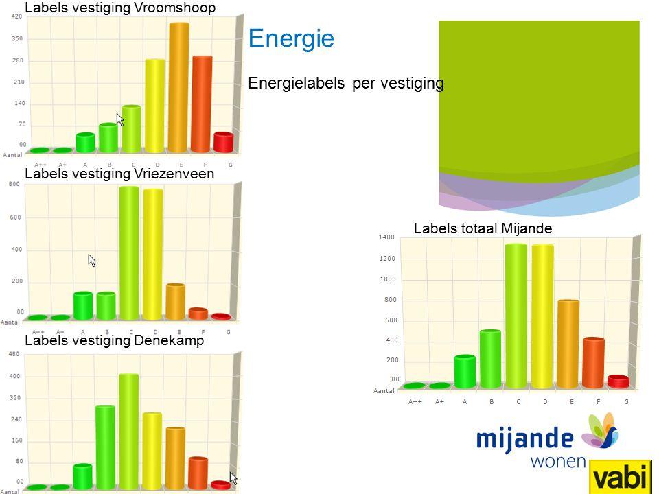 15 Titel presentatie Mijande Wonen Energie Labels totaal Mijande Labels vestiging Vroomshoop Labels vestiging Denekamp Labels vestiging Vriezenveen Energie Energielabels per vestiging