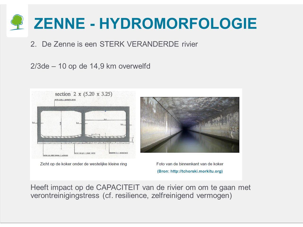 ZENNE - HYDROMORFOLOGIE 2.De Zenne is een STERK VERANDERDE rivier 2/3de – 10 op de 14,9 km overwelfd Heeft impact op de CAPACITEIT van de rivier om om te gaan met verontreinigingstress (cf.