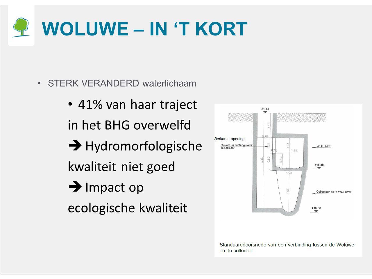 WOLUWE – IN 'T KORT STERK VERANDERD waterlichaam 41% van haar traject in het BHG overwelfd  Hydromorfologische kwaliteit niet goed  Impact op ecologische kwaliteit