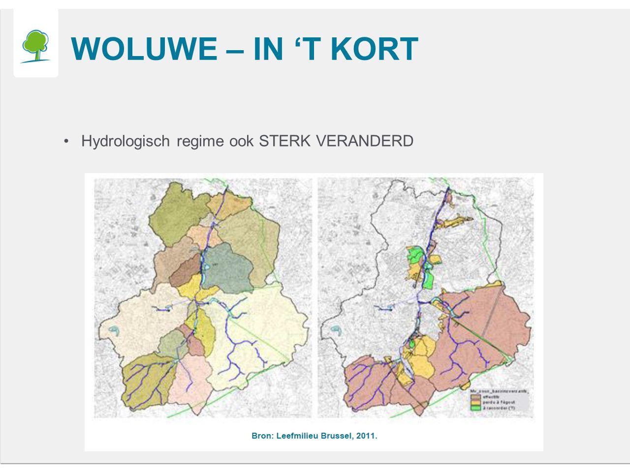WOLUWE – IN 'T KORT Hydrologisch regime ook STERK VERANDERD