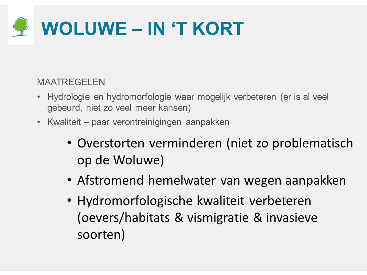 WOLUWE – IN 'T KORT MAATREGELEN Hydrologie en hydromorfologie waar mogelijk verbeteren (er is al veel gebeurd, niet zo veel meer kansen) Kwaliteit – paar verontreinigingen aanpakken Overstorten verminderen (niet zo problematisch op de Woluwe) Afstromend hemelwater van wegen aanpakken Hydromorfologische kwaliteit verbeteren (oevers/habitats & vismigratie & invasieve soorten)