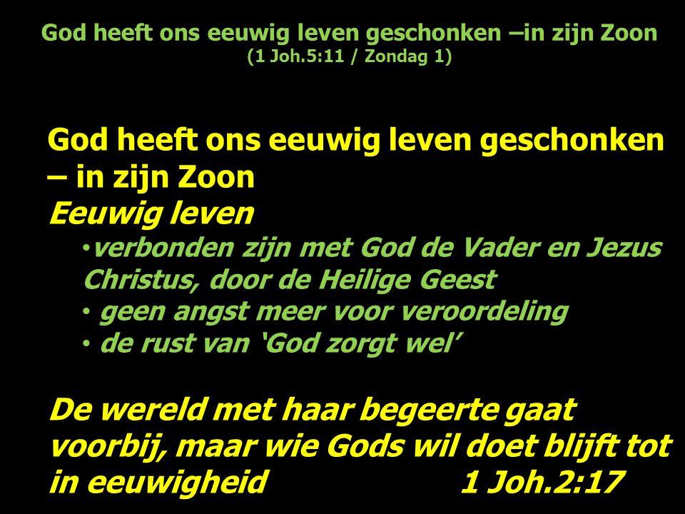 God heeft ons eeuwig leven geschonken –in zijn Zoon (1 Joh.5:11 / Zondag 1) God heeft ons eeuwig leven geschonken – in zijn Zoon Eeuwig leven verbonde