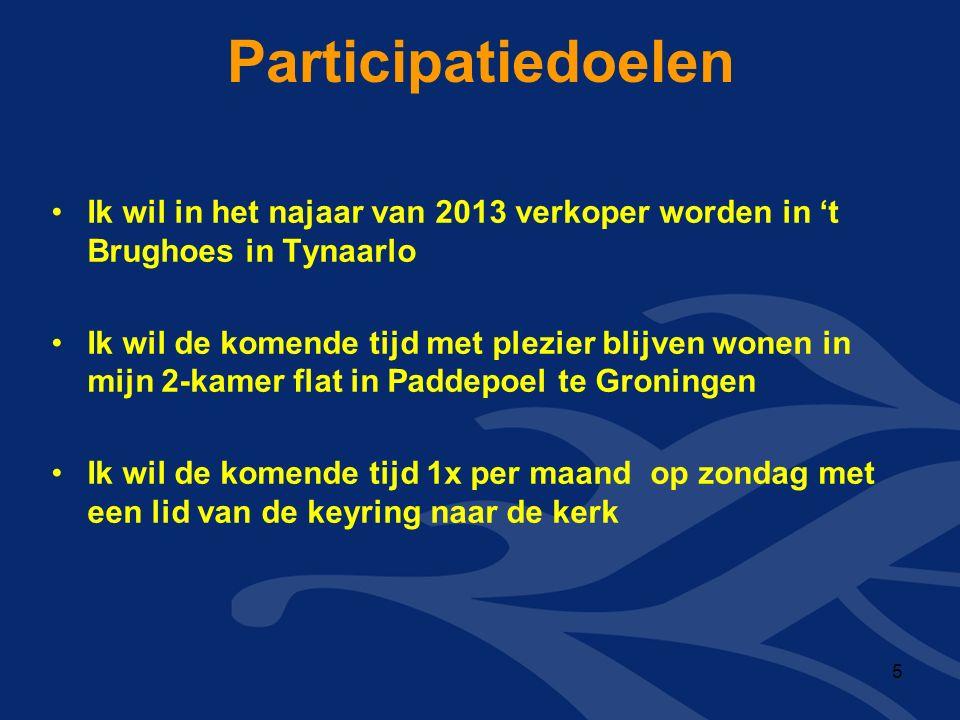 Participatiedoelen Ik wil in het najaar van 2013 verkoper worden in 't Brughoes in Tynaarlo Ik wil de komende tijd met plezier blijven wonen in mijn 2-kamer flat in Paddepoel te Groningen Ik wil de komende tijd 1x per maand op zondag met een lid van de keyring naar de kerk 5