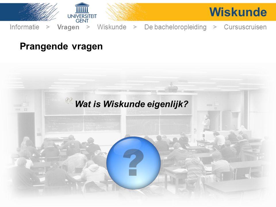 Wiskunde Prangende vragen Wat is Wiskunde eigenlijk.