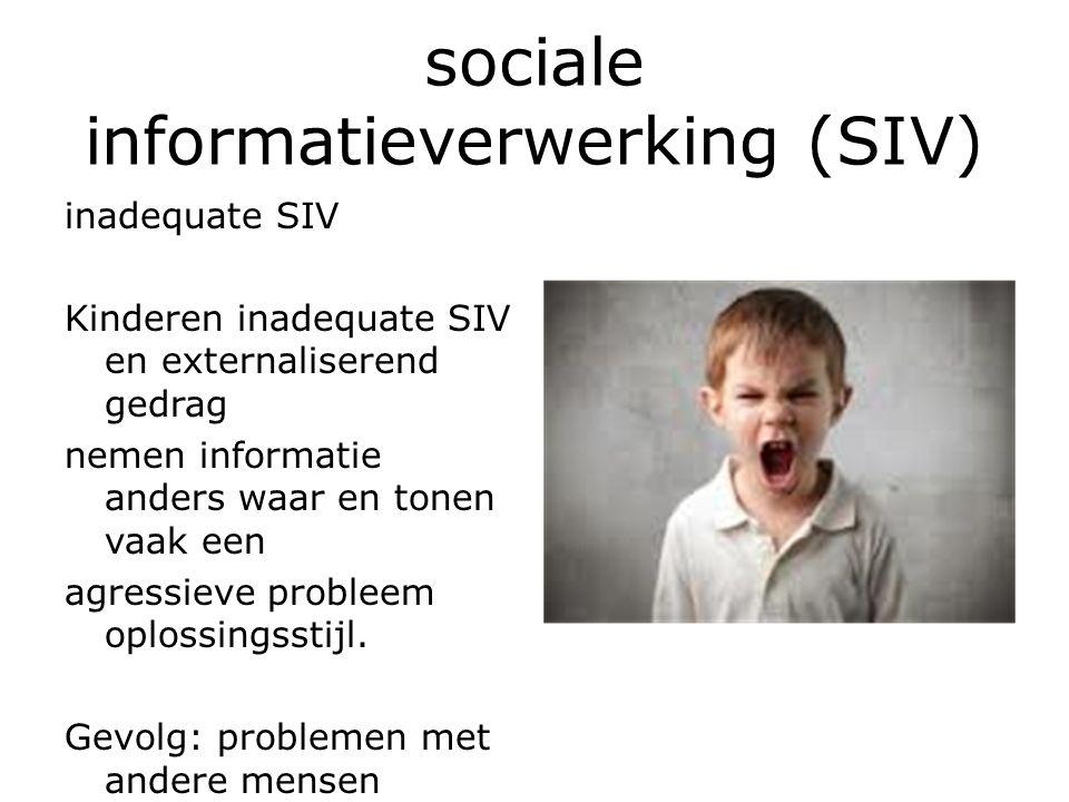 sociale informatieverwerking (SIV) inadequate SIV Kinderen inadequate SIV en externaliserend gedrag nemen informatie anders waar en tonen vaak een agressieve probleem oplossingsstijl.