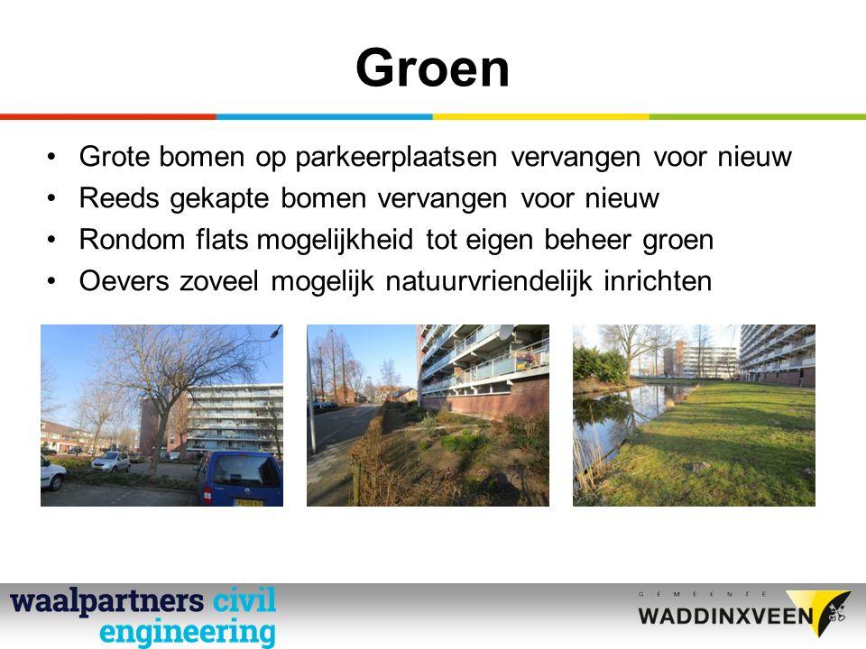 Groen Grote bomen op parkeerplaatsen vervangen voor nieuw Reeds gekapte bomen vervangen voor nieuw Rondom flats mogelijkheid tot eigen beheer groen Oevers zoveel mogelijk natuurvriendelijk inrichten