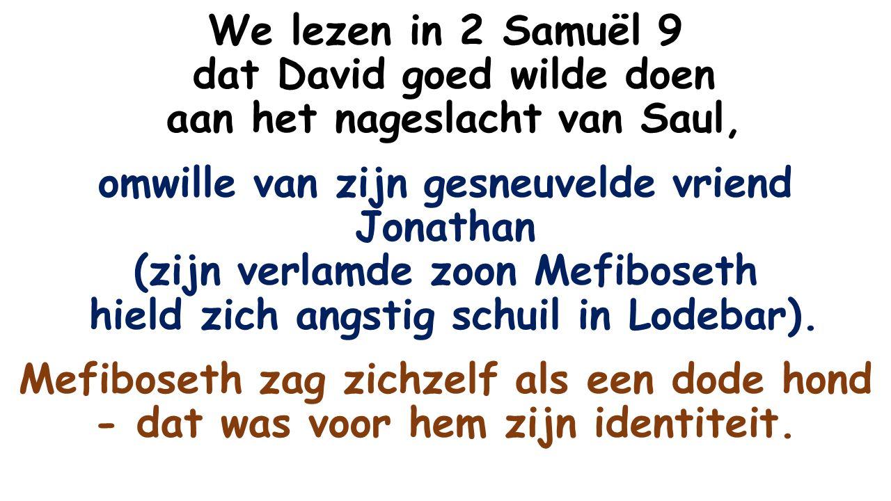We lezen in 2 Samuël 9 dat David goed wilde doen aan het nageslacht van Saul, omwille van zijn gesneuvelde vriend Jonathan (zijn verlamde zoon Mefiboseth hield zich angstig schuil in Lodebar).
