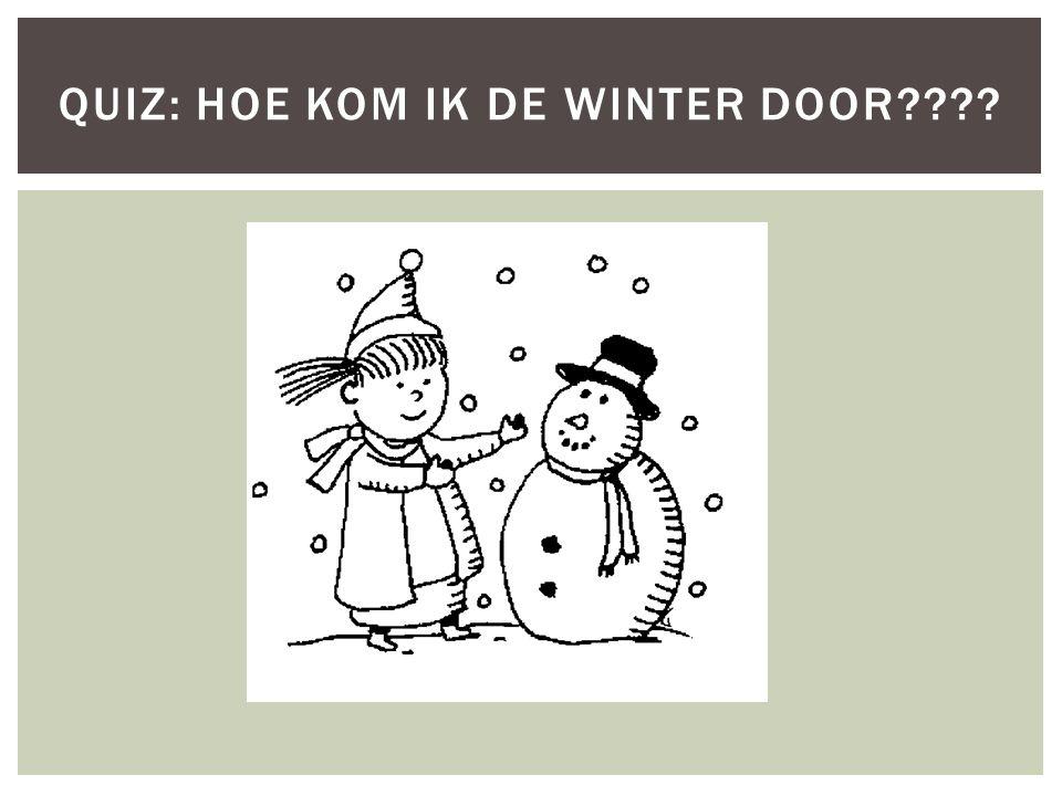 QUIZ: HOE KOM IK DE WINTER DOOR????