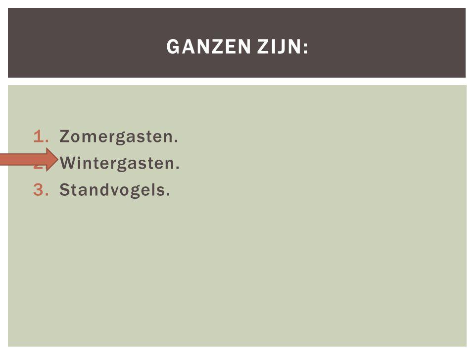 1.Zomergasten. 2.Wintergasten. 3.Standvogels. GANZEN ZIJN: