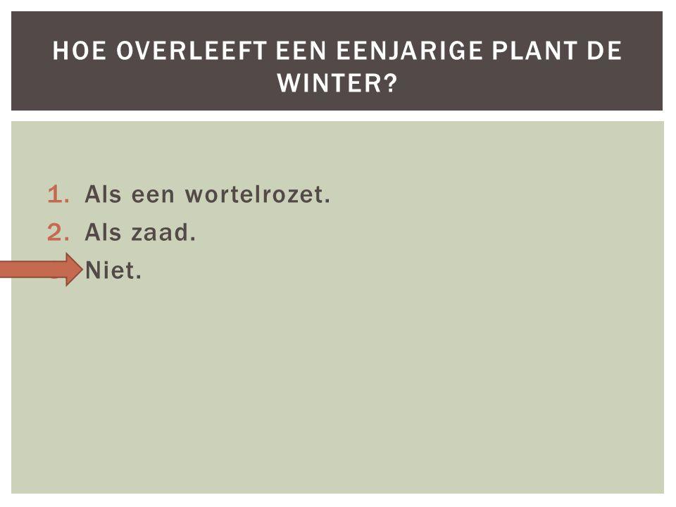 1.Als een wortelrozet. 2.Als zaad. 3.Niet. HOE OVERLEEFT EEN EENJARIGE PLANT DE WINTER?
