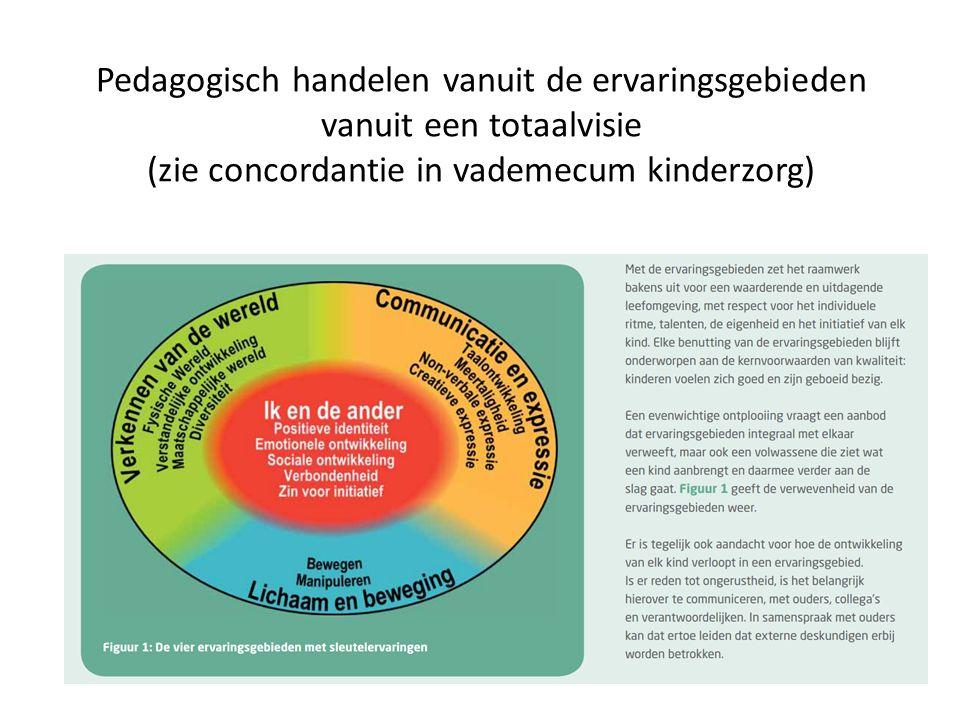 Pedagogisch handelen vanuit de ervaringsgebieden vanuit een totaalvisie (zie concordantie in vademecum kinderzorg)