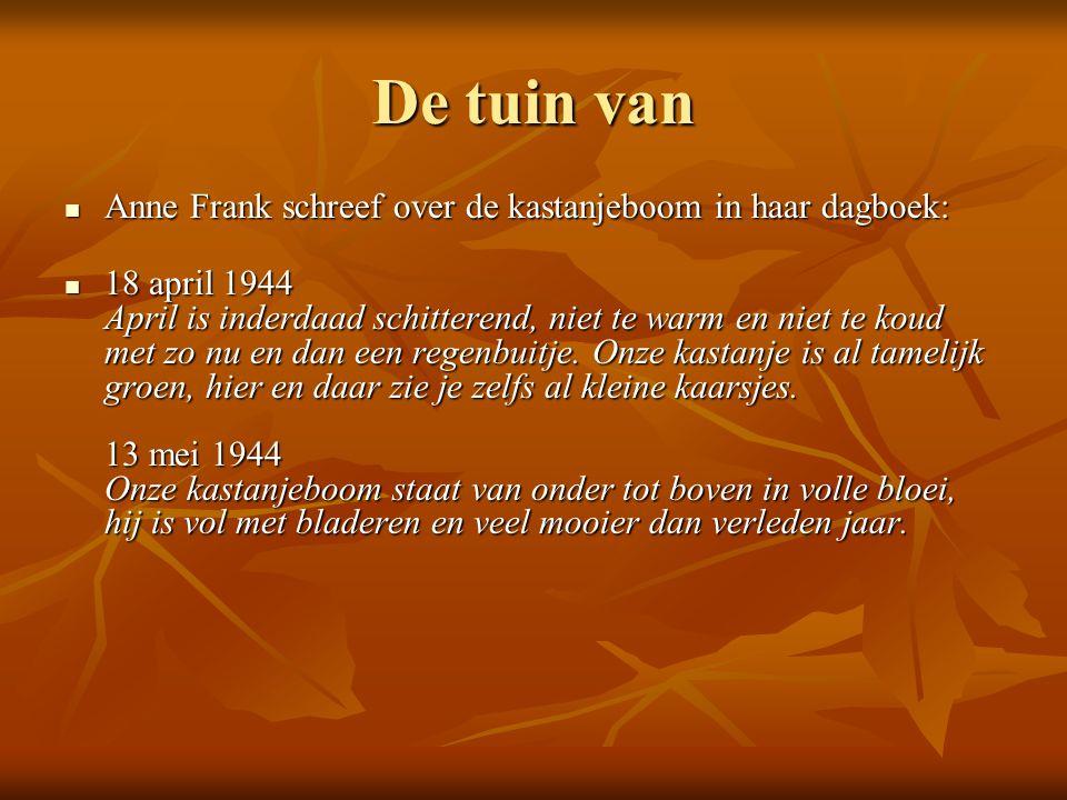 De tuin van Anne Frank schreef over de kastanjeboom in haar dagboek: Anne Frank schreef over de kastanjeboom in haar dagboek: 18 april 1944 April is inderdaad schitterend, niet te warm en niet te koud met zo nu en dan een regenbuitje.