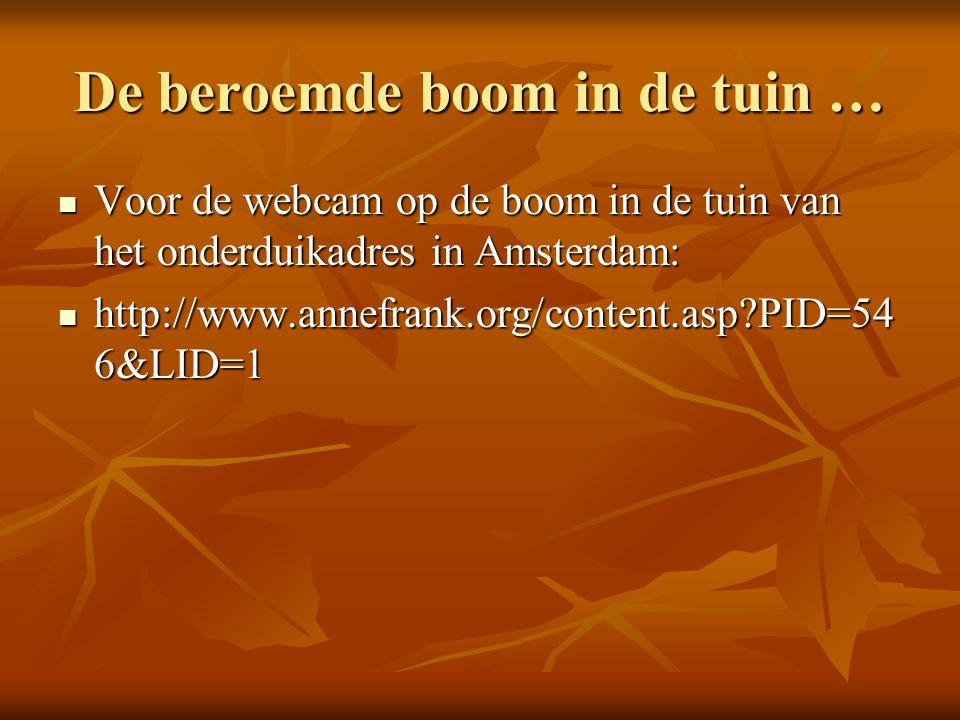 De beroemde boom in de tuin … Voor de webcam op de boom in de tuin van het onderduikadres in Amsterdam: Voor de webcam op de boom in de tuin van het onderduikadres in Amsterdam: http://www.annefrank.org/content.asp PID=54 6&LID=1 http://www.annefrank.org/content.asp PID=54 6&LID=1