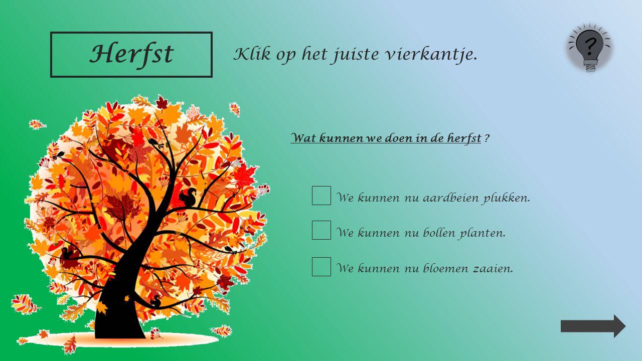 Herfst Fruit oogsten : __________ __________ __________ Klik op de juiste antwoorden.