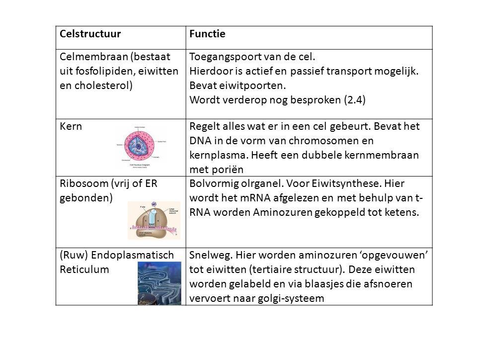 CelstructuurFunctie Celmembraan (bestaat uit fosfolipiden, eiwitten en cholesterol) Toegangspoort van de cel.