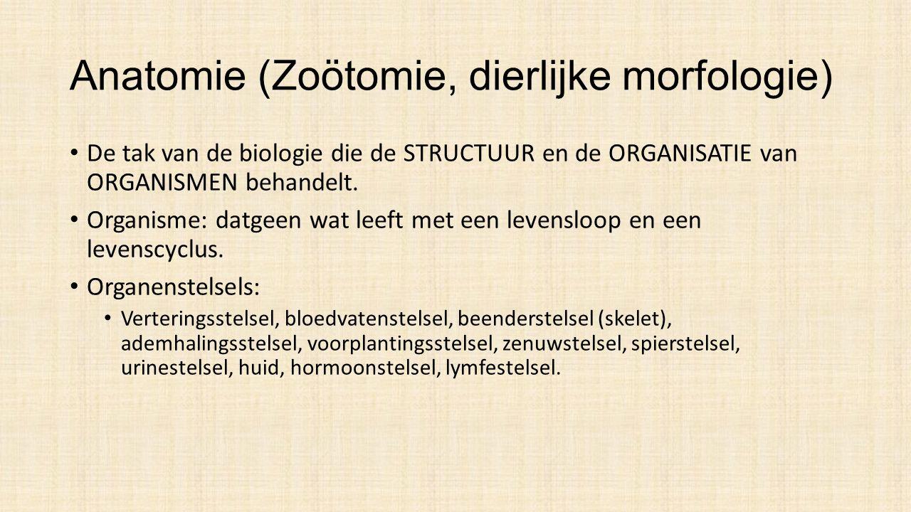 Anatomie (Zoötomie, dierlijke morfologie) De tak van de biologie die de STRUCTUUR en de ORGANISATIE van ORGANISMEN behandelt.