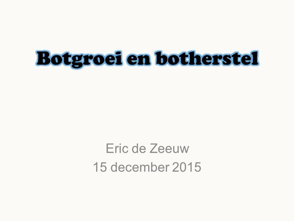 Eric de Zeeuw 15 december 2015