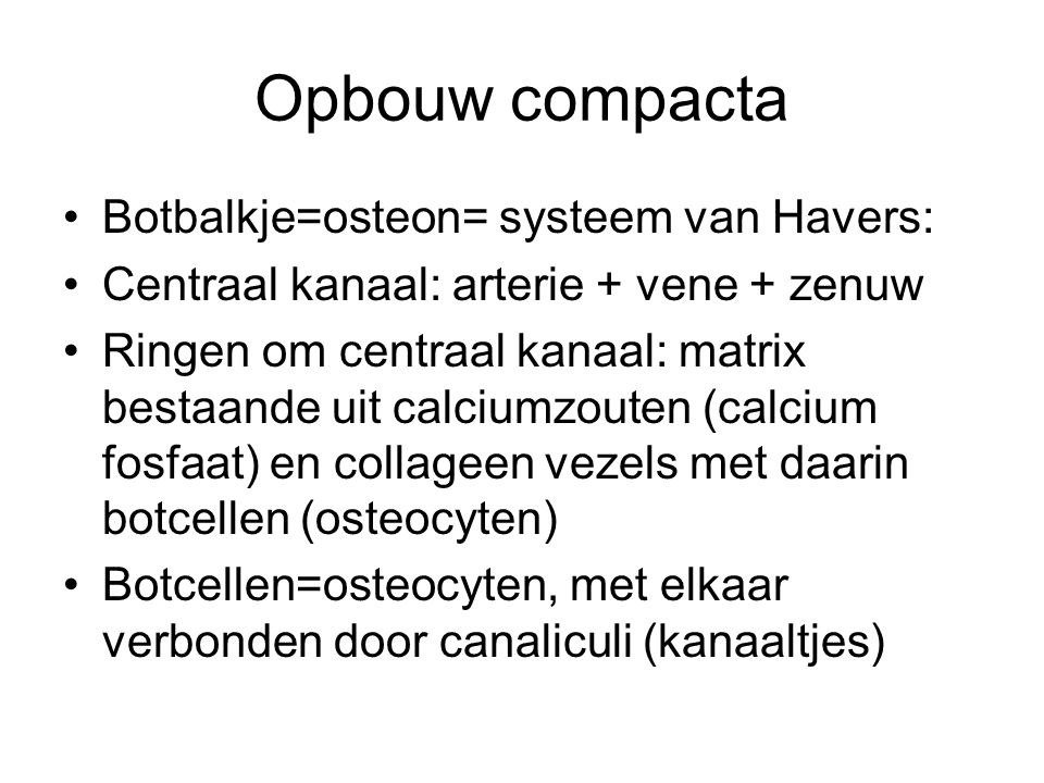 Opbouw compacta Botbalkje=osteon= systeem van Havers: Centraal kanaal: arterie + vene + zenuw Ringen om centraal kanaal: matrix bestaande uit calciumzouten (calcium fosfaat) en collageen vezels met daarin botcellen (osteocyten) Botcellen=osteocyten, met elkaar verbonden door canaliculi (kanaaltjes)