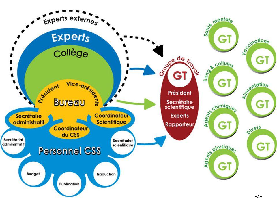 HGR - CSS 2009 Het College als beslissingsorgaan o.a.: - Jaarlijks vastleggen van het programma van eigen initiatieven - Behandelen van aanvragen - Kwaliteitsbewaking - Valideren van adviezen - Communicatie - Samenstelling van de Raad -4-